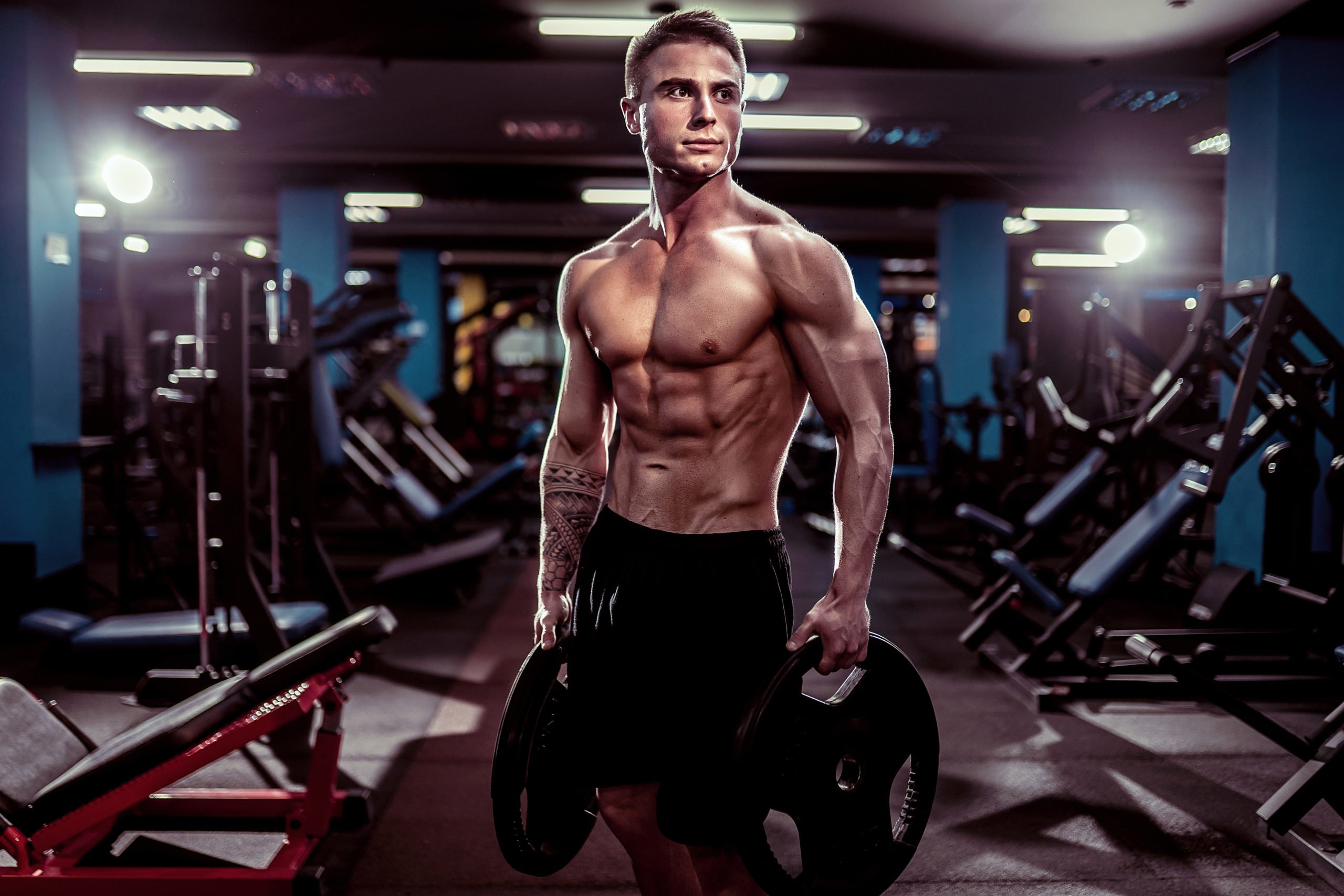 The 5 Greatest Isolation Exercises for an Aesthetic Physique